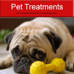 Pet Treatments